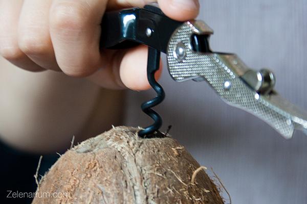 Kokos-otvaranje-600
